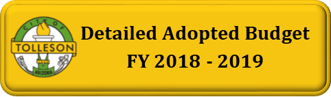 Detailed Adopted Budget Button 1