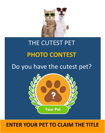 Cutest Pet Contest Opens in new window